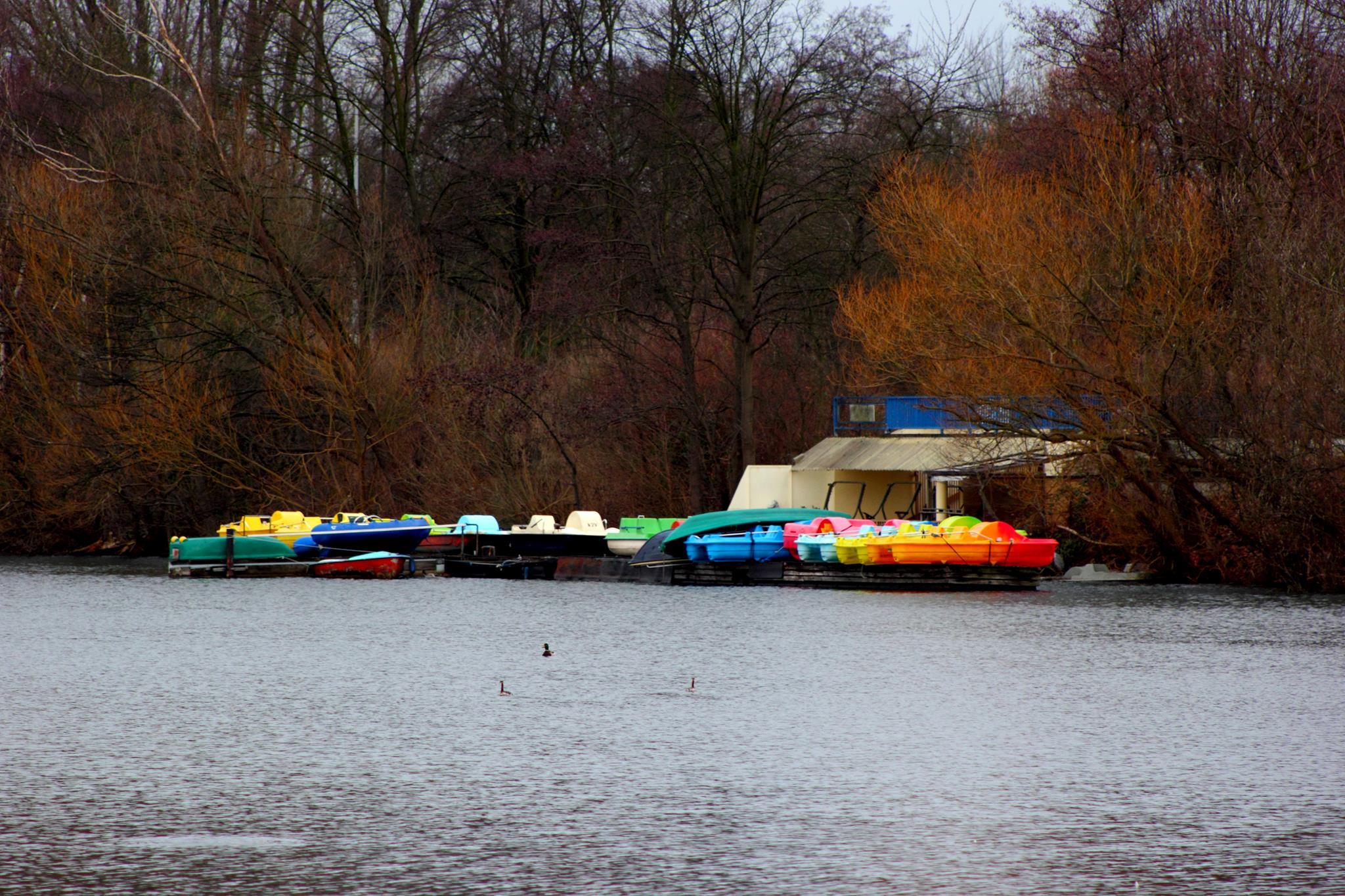 Regenbogenboote.jpg